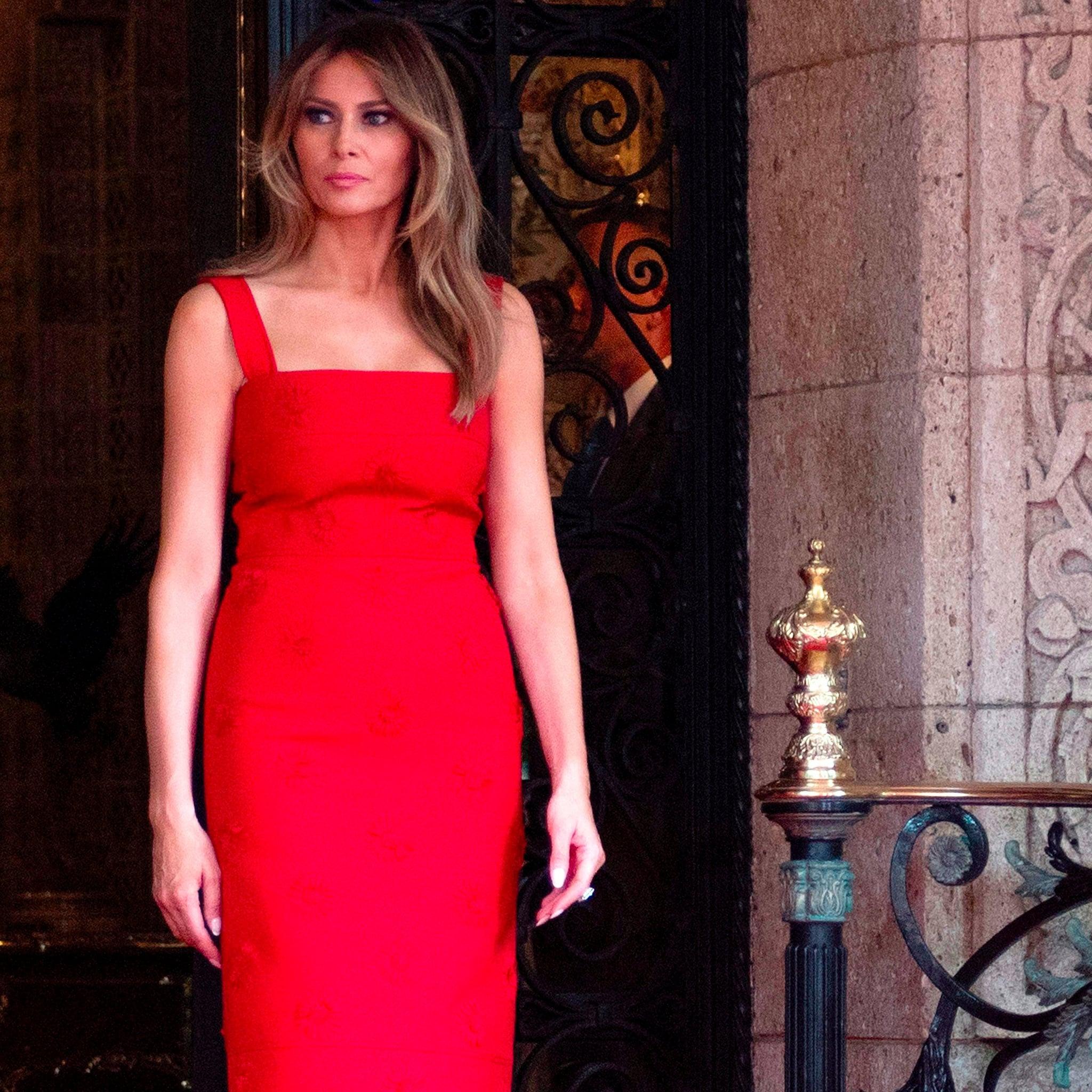 Melania Trump Red Valentino Dress   POPSUGAR Fashion