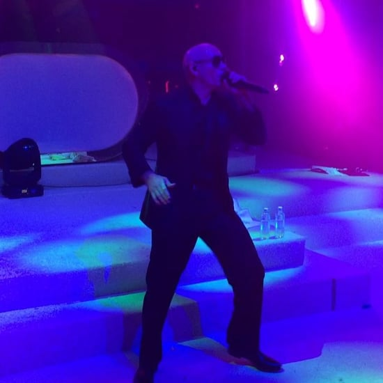Pitbull Performing at Sofia Vergara's Wedding