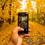 Take Fall Instagram photos.
