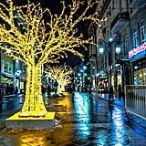 Take in the radiant street lighting.
