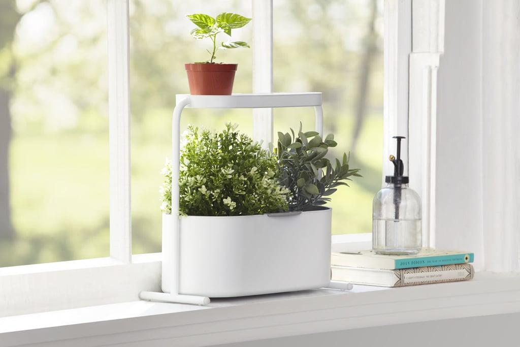 The Best Indoor Garden Kits