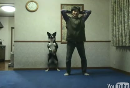 Dog Does Squats With His Human Companion
