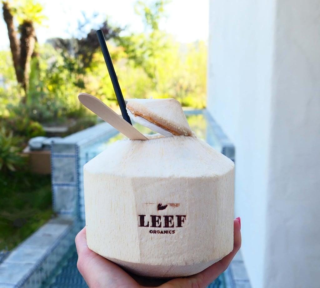 LEEF Organics DIY CBD Coconut Water