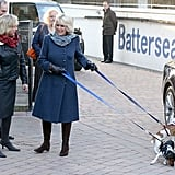 Camilla, Duchess of Cornwall With Beth and Bluebell the Jack Russell Terriers