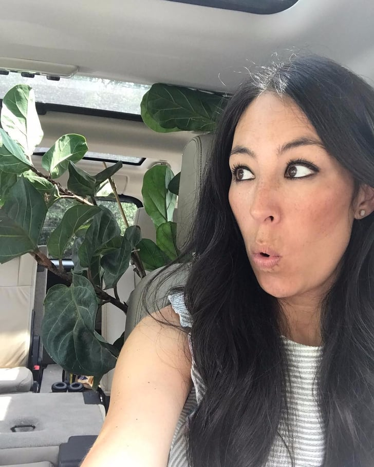 joanna gaines is a plant lady popsugar home. Black Bedroom Furniture Sets. Home Design Ideas
