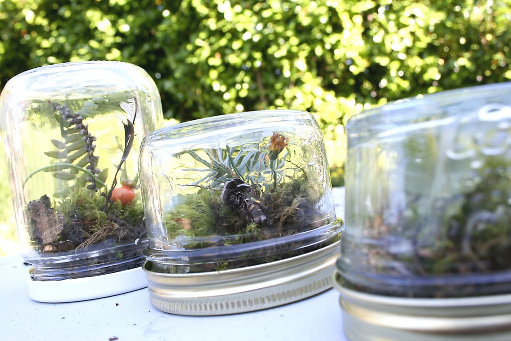 Upcycle Your Baby Food Jars Into Terrariums