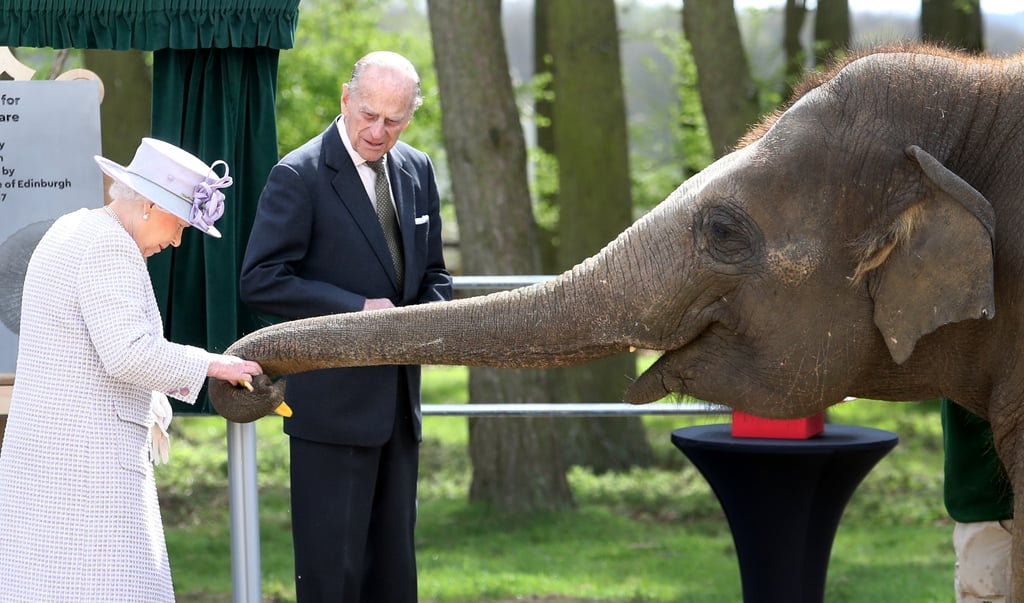 Queen Elizabeth II and Prince Philip fed an elephant when they visited the ZSL Whipsnade Zoo in Dunstable, UK.