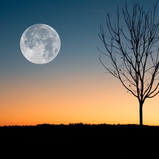 When to Watch Every Full Moon in 2021