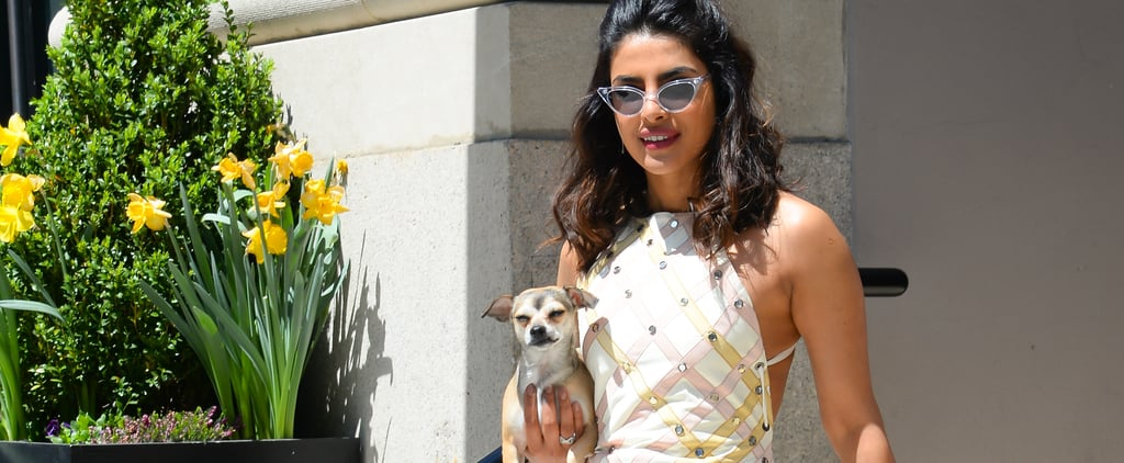 18 Celebrities With Rescue Pets