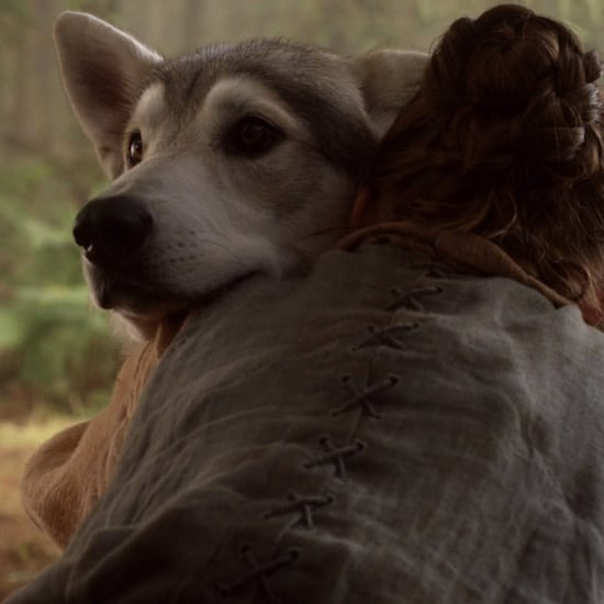Where Is Arya's Direwolf Nymeria on Game of Thrones?