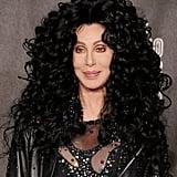 Cher, 2010