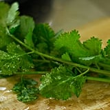 Cilantro: Love It or Leave It?