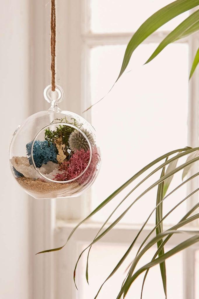 Urban Outfitters DIY Hanging Geode Terrarium ($24)
