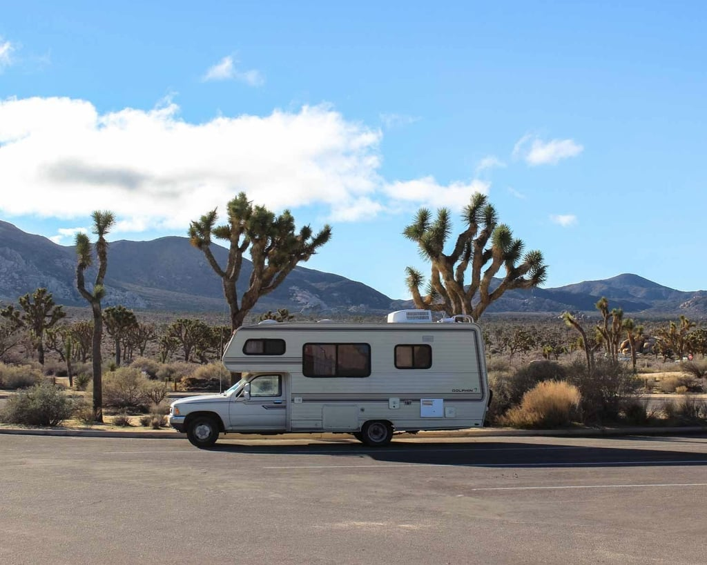 7 Reasons Joshua Tree Is the Ultimate Desert Escape