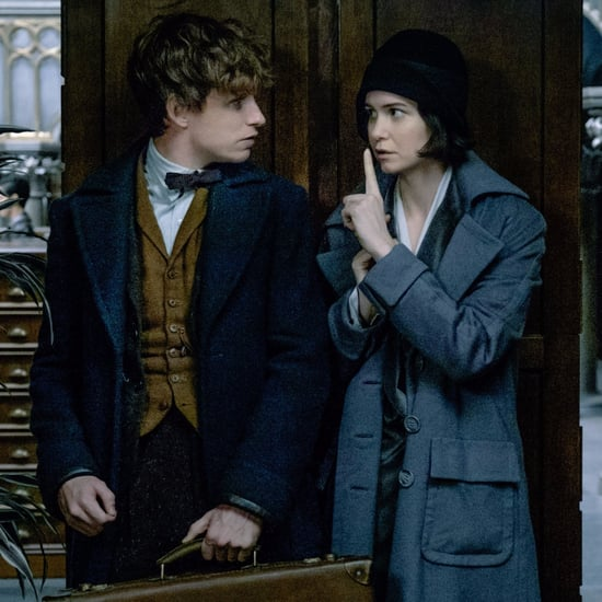 Fantastic Beasts and Where to Find Them Sequel Details