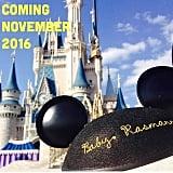 Disney's Smallest Fan Coming Soon