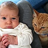 Alyson Hannigan showed off adorable baby Keeva, who wasn't so sure of the family cat. Source: Twitter user alydenisof
