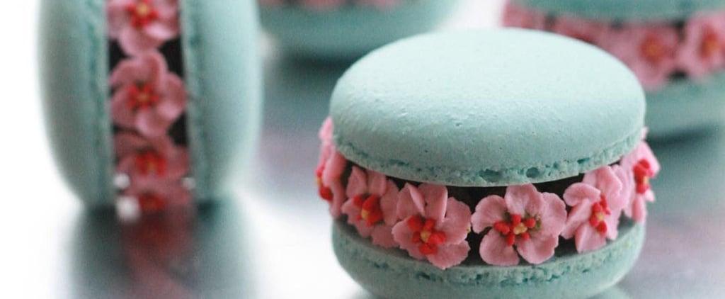 Macaron Blossom Photos