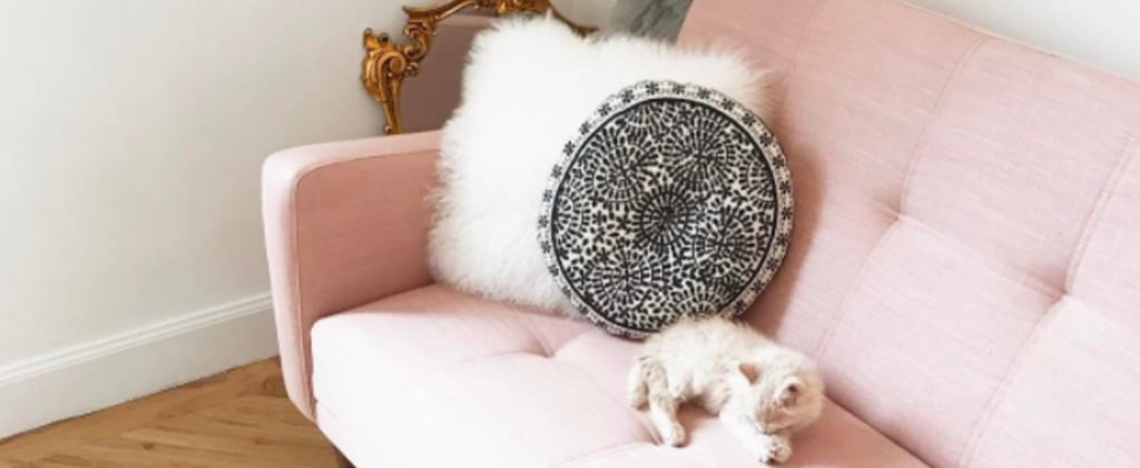 Pink Sofas Are the Home Trend That Just Keeps on Giving
