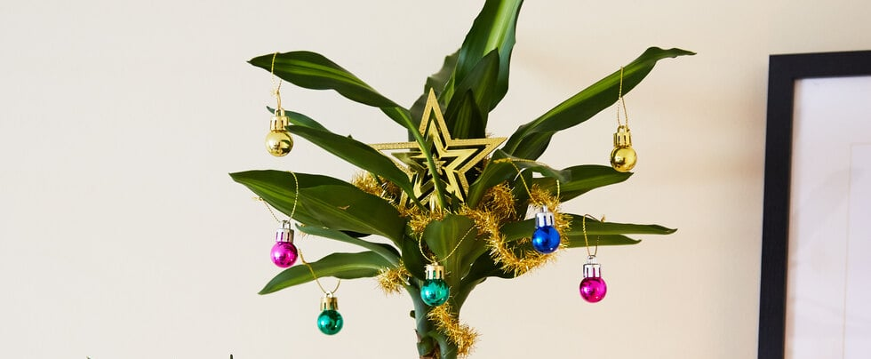 Christmas Ornaments For Plants