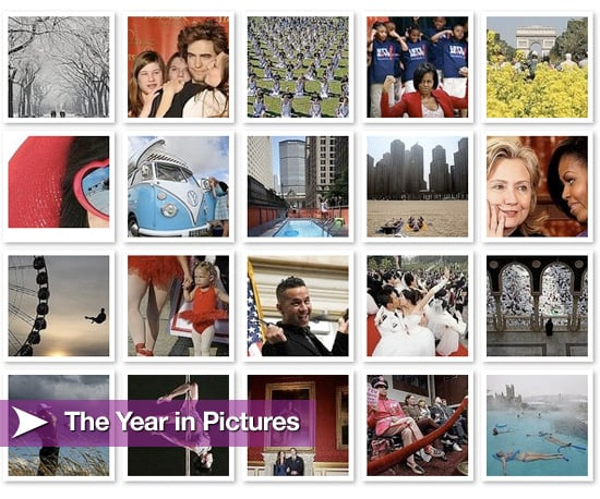 2010 in Pictures