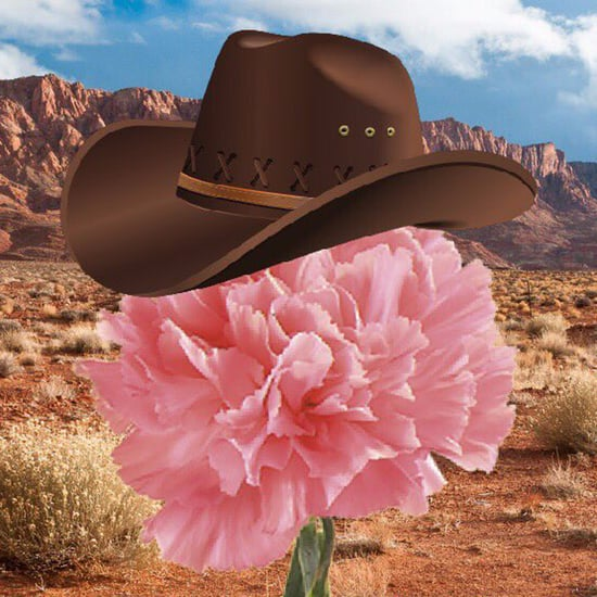 Best What in Tarnation Memes