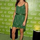 2007, The CW TCA All Star Celebration Party