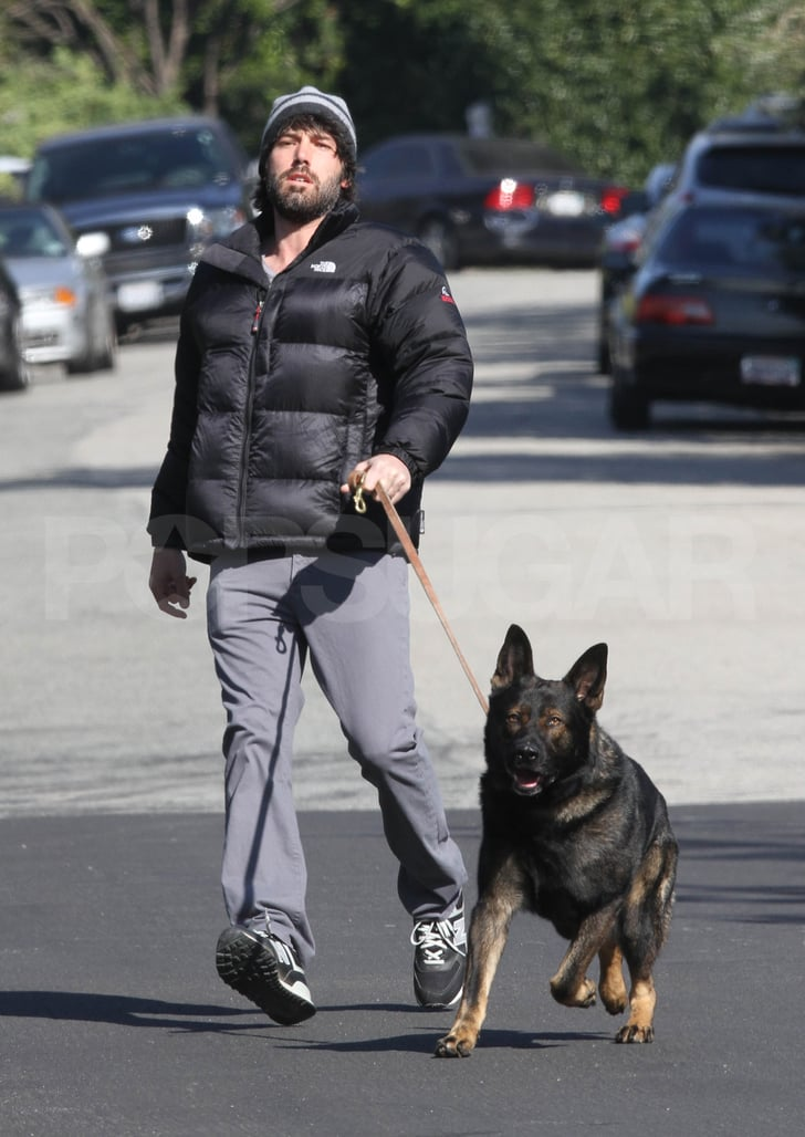 Ben Affleck took his big dog out.