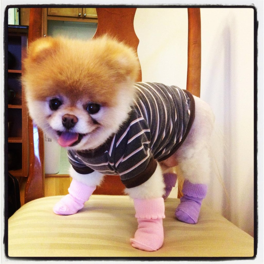 This boy isn't afraid to don pink and purple socks!