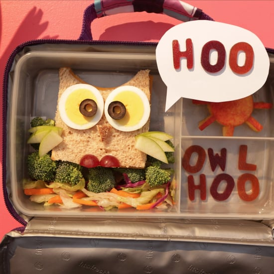 Make A Cute Owl Sandwich For Your Kid's School Lunch Box