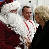 Camilla chatted with a man dressed as Father Christmas while backstage at the Horse of the Year show in 2014.