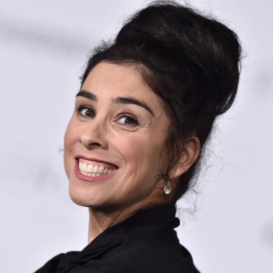 Sarah Silverman's Tweets About Motherhood February 2017