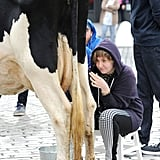 Lena Dunham milked a cow in NYC on Wednesday.