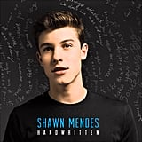 """Stitches"" by Shawn Mendes"