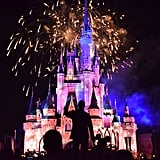 """Holiday Wishes: Celebrate the Spirit of the Season"" Fireworks Show"