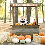 Have a Pumpkin Patch Day