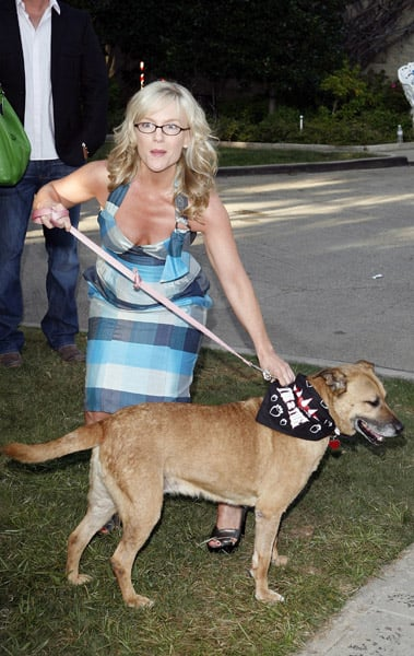 """Much Love Animal Rescue Presents The Second Annual """"Bow Wow WOW!"""""""