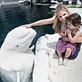 Sarah Michelle Gellar and her daughter, Charlotte Prinze, went to SeaWorld San Diego on Friday.