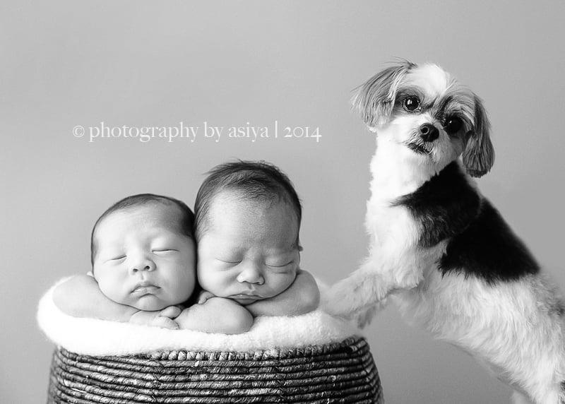 Newborn Twin Photo Ideas | POPSUGAR Moms