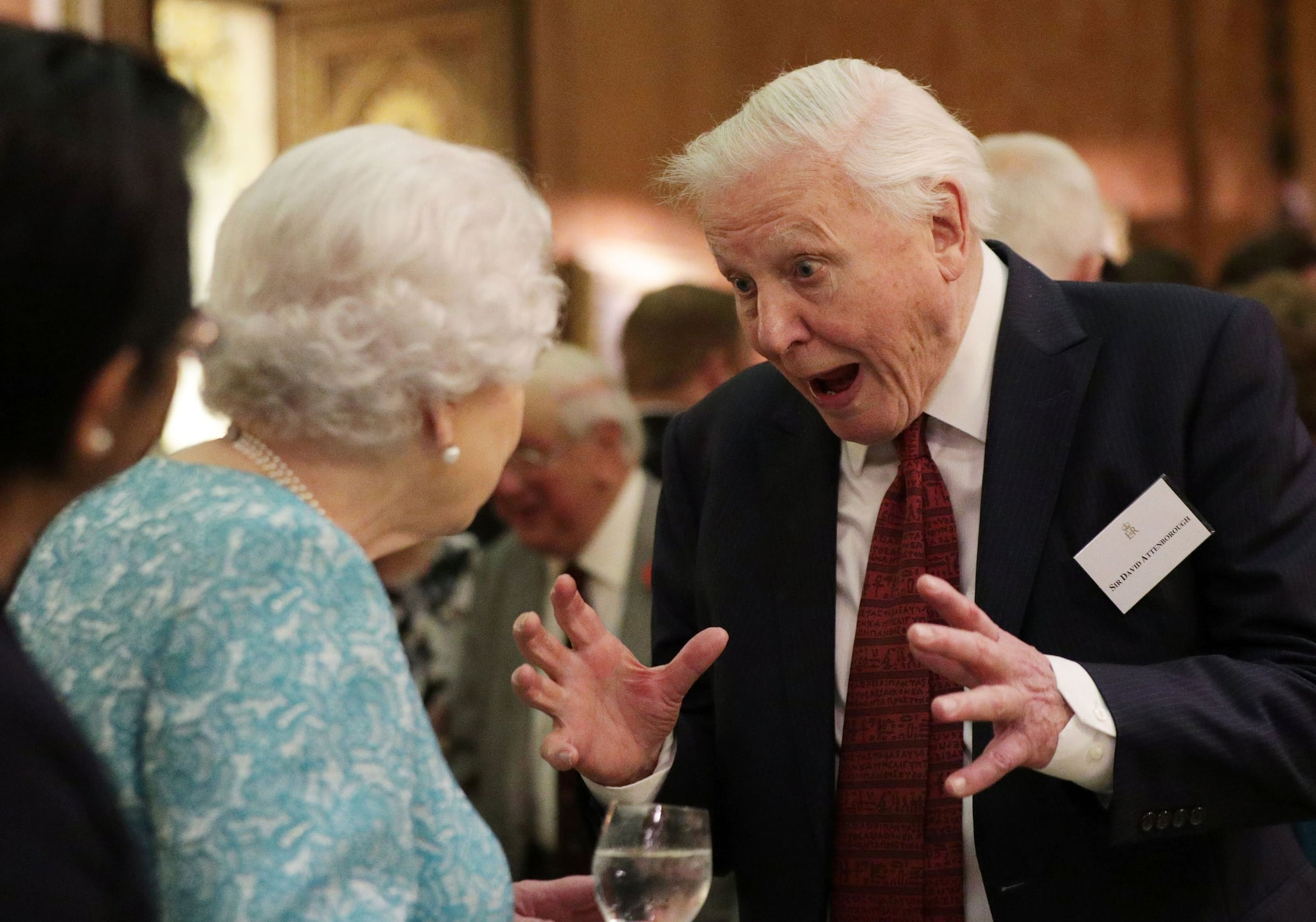 Britain's Queen Elizabeth II (L) reacts as she talks with television presenter David Attenborough during an event at Buckingham Palace in central London on November 15, 2016, to showcase forestry projects that have been dedicated to the new conservation initiative - The Queen's Commonwealth Canopy (QCC). / AFP / POOL / Yui Mok        (Photo credit should read YUI MOK/AFP/Getty Images)