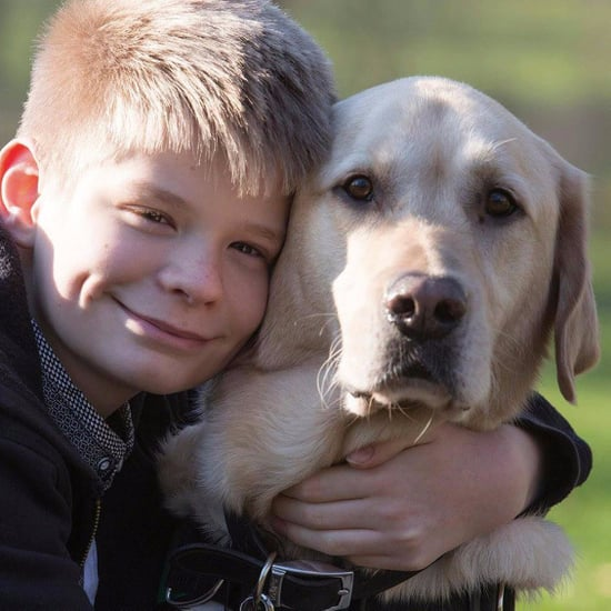 Dog Helps Boy With Autism