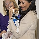 Meghan cuddled up to a dog named Minnie during her visit to the animal welfare charity Mayhew in January 2019.