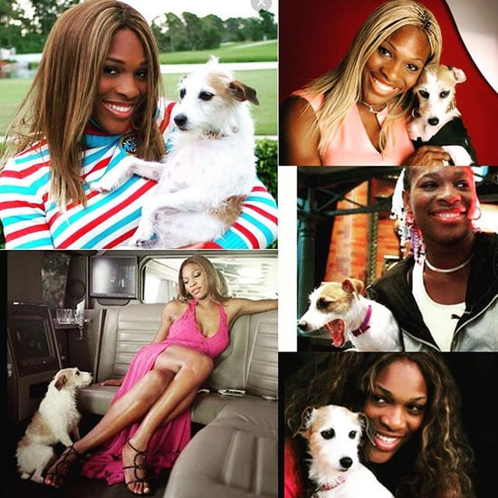 Serena Williams's Dog Jackie Dies