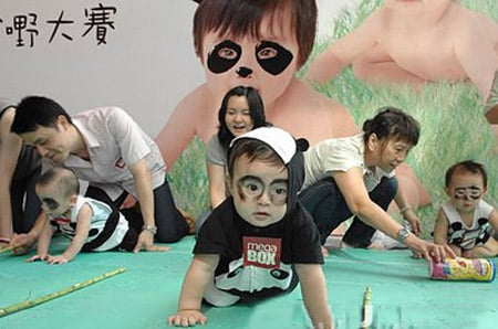 Cute Alert: Panda Baby Crawling Contest