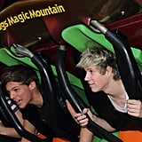Louis Tomlinson and Niall Horan at Six Flags Magic Mountain in 2012