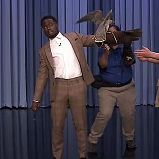 Robert Irwin and Kevin Hart on Tonight Show September 2018