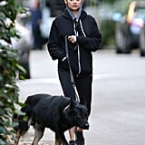 Nicole Richie kept warm in a sweatshirt while walking her new dog.
