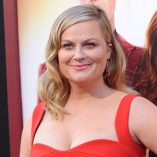 Amy Poehler Wine Country Movie Details