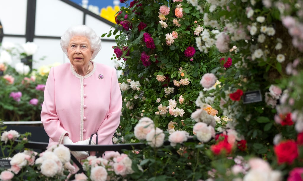 queen elizabeth ii at the chelsea flower show 2018 popsugar celebrity uk. Black Bedroom Furniture Sets. Home Design Ideas