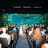 Aquarium Wedding